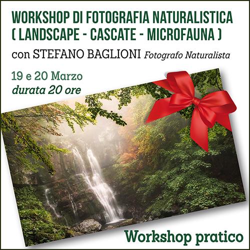 buono_regalo_naturalistica_baglioni_500x500pixel