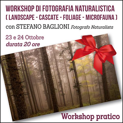 buono_regalo_naturalistica_baglioni_ottobre_500x500pixel