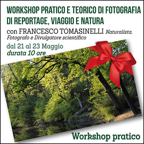 buono_regalo_reportage_tomasinelli_maggio_500x500pixel