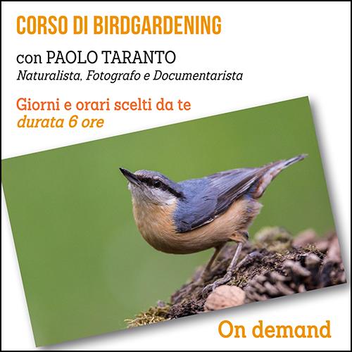 shop_birdgardening_500x500pixel