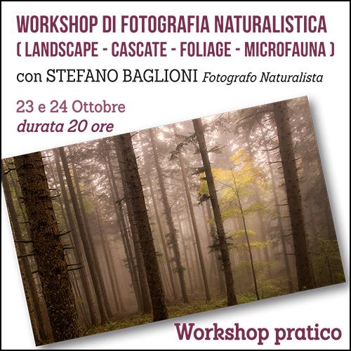 shop_naturalistica_baglioni_ottobre_500x500pixel