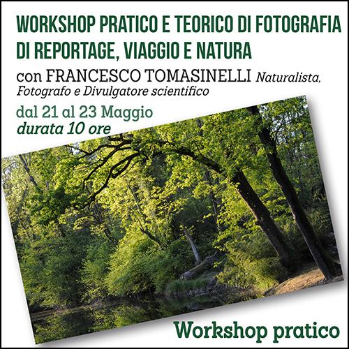 shop_reportage_tomasinelli_maggio_500x500pixel