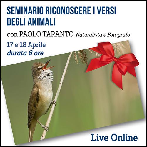 buoni_regalo_seminario_versi_animali_500x500pixel