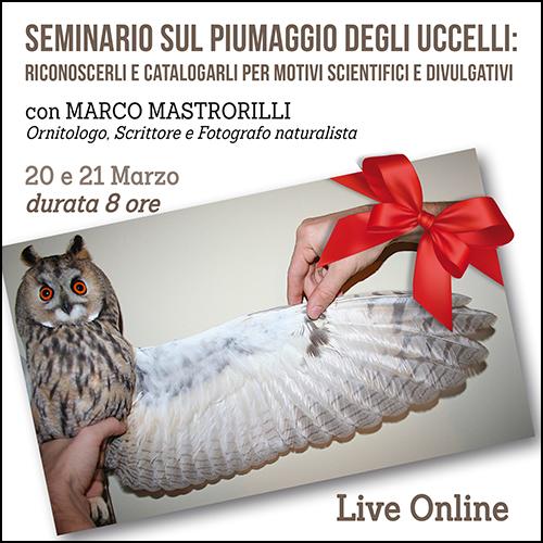 buono_regalo_seminario_piume_500x500pixel