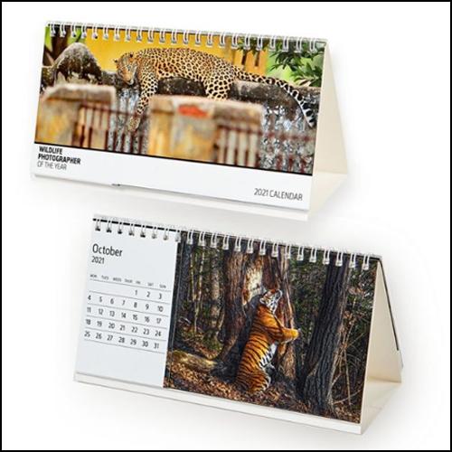 calendario da tavolo 500×500 pixel