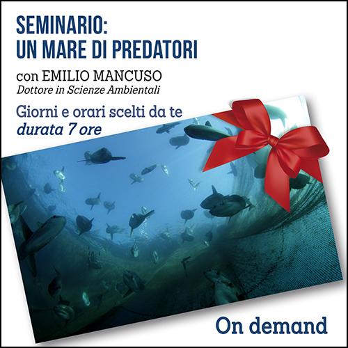 buono_reagalo_predatorii_500x500pixel