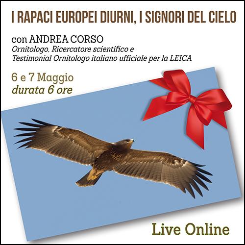 buono_regalo_rapaci_diurni_europeii_500x500pixel