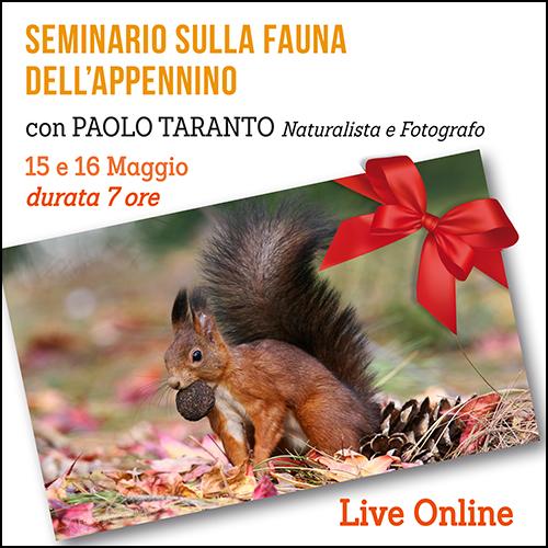 buono_regalo_fauna_appennino_500x500pixel