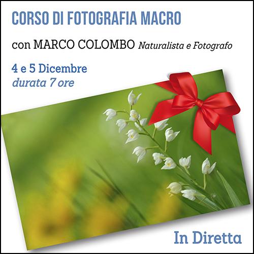 buono_regalo_corso_macro_colombo_500x500pixe