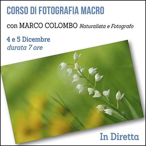 shop_corso_macro_colombo_500x500pixe